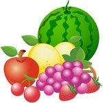 ふるさとチョイス 天童市 フルーツ